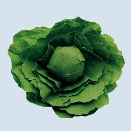 Erzi - Salatkopf - Holz