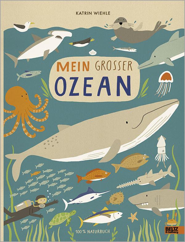Kinderbuch - Mein grosser Ozean- Verlag Beltz und Gelberg