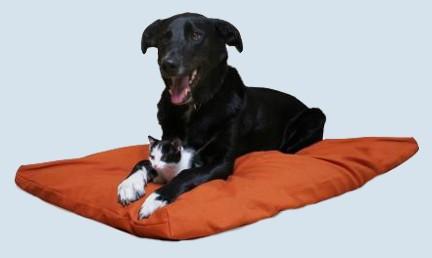 mudis Hundebett, Hundekissen - Baumwolle, Bio - L