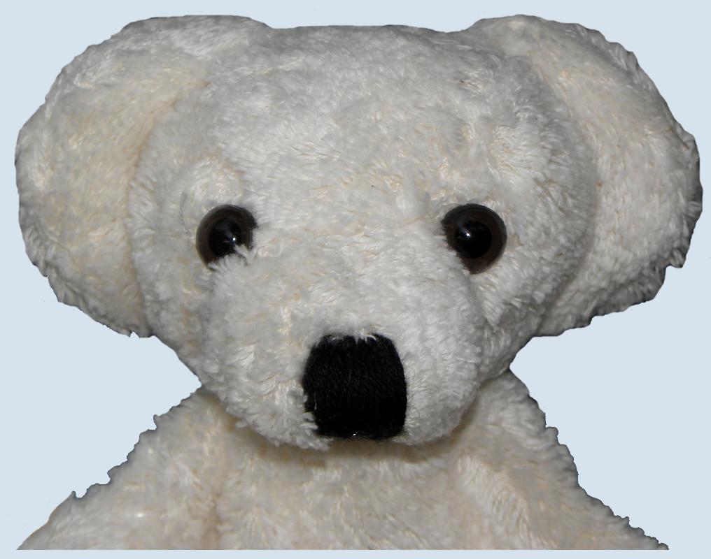 an autobiography on a teddy Otto: the autobiography of a teddy bear: this is an autobiographical tale of a  teddy bear named otto otto is a german-born teddy bear.
