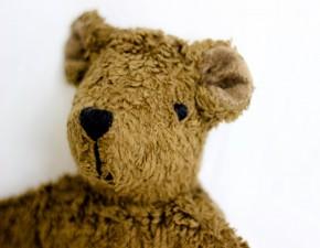 Senger - Kuscheltier Baby Bär, Teddy - braun, Bio Baumwolle