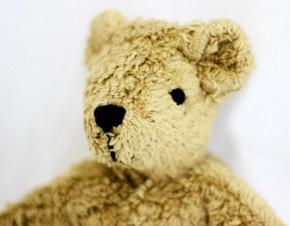 Senger - Kuscheltier Baby Bär, Teddy - beige, Bio Baumwolle