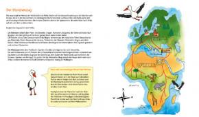 Kinderbuch - Was macht der Storch im Winter - neunmalklug